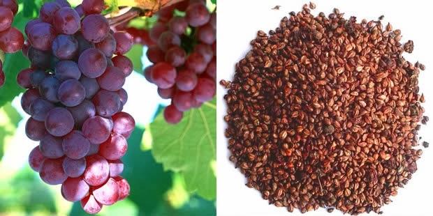Manfaat Biji Anggur Merah Untuk Kulit Wajah