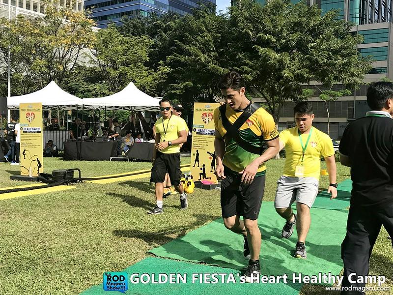 golden fiestaIMG_7266