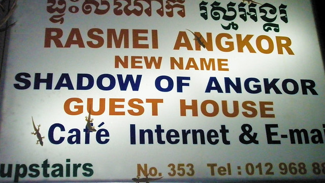 Tiny lizards crawl all over the sign at the Siem Reap Guest House 'Shadow of Angkor' in Cambodia