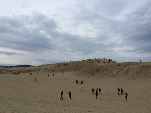 鳥取砂丘でポケモンGOする人たち2