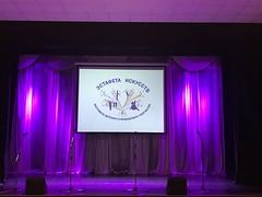 Мы начали #эстафетуискусств сегодня 3-й день очного прослушивания в жанрах #фольклор и #концертныеномера #этнокультура #насумской #ддт #добрея #музыка #фольк #народноепение
