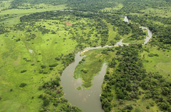 Another temporary goodbye to Gorongosa