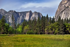 A Grassy Meadow and Mountains Peaks Beyond (Yosemite National Park)