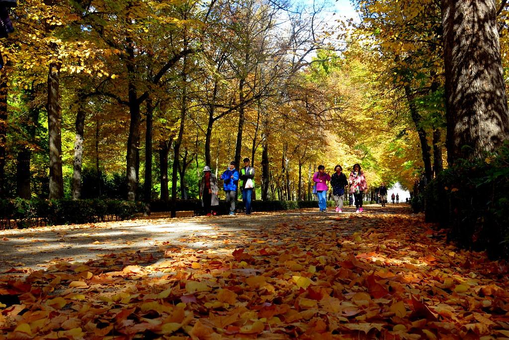 Día de la Almudena en los Jardines del Príncipe de Aranjuez