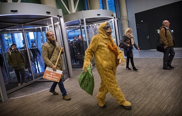 Gevluchte orang-oetans op de stoep van ministerie in Den Haag
