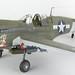 Eduard P-40N by Bryce Nicely