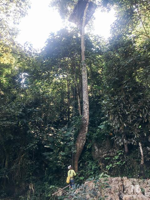 Nhật kí du lịch bụi Lào: Chơi Zipline ở Vang Vieng
