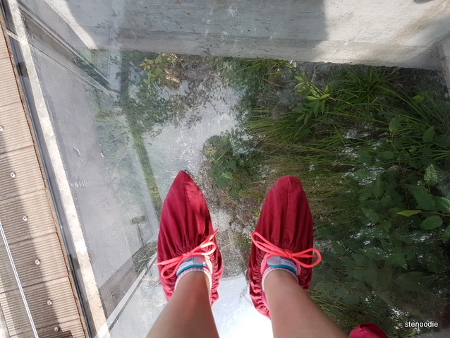 cloth slippers on glass path
