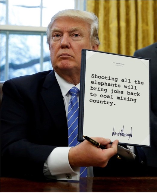 Trump_shootingalltheelephants