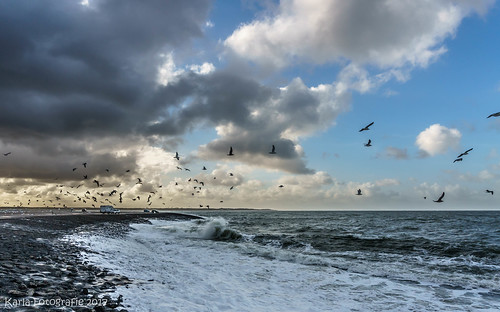 Clouds, birds and sea...