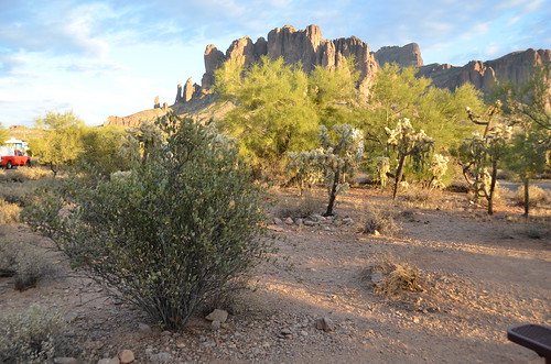 Lost Dutchman  view from teh campsite