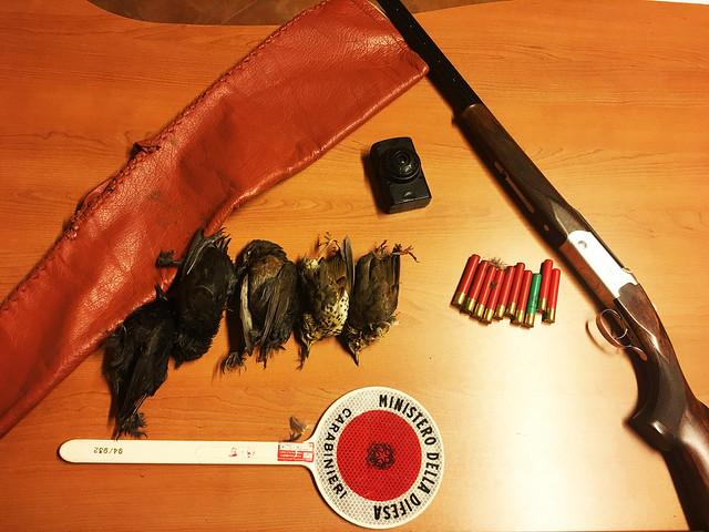 bracconaggio fucile-richiami illegali-munizioni