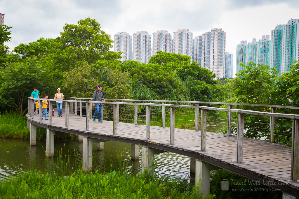 A walk around Hong Kong Wetland Park