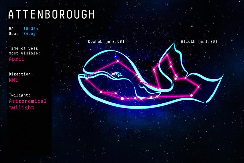 Constellation Sir David Attenborough