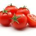 تفسير حلم الطماطم في المنام by sateq7