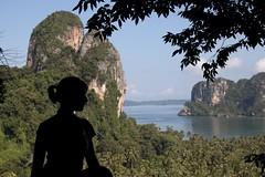 Paradise profile