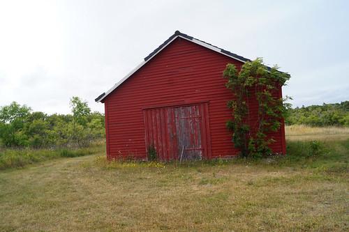 Rauøy fort (117)