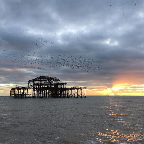 Another sunset, pier, and starlings shot