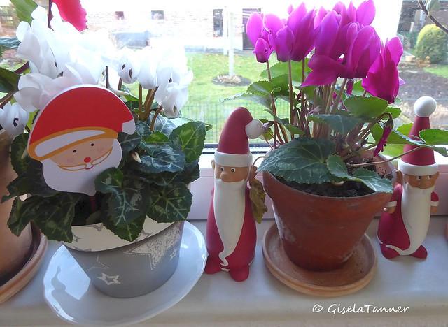 Weihnachtsdeko im Haus