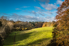 Westonbirt National Arboretum
