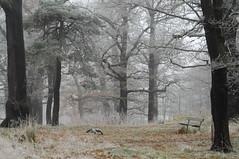 2010.11.17