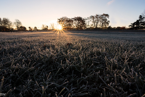lowell frost grass sunrise 6d 1740mm