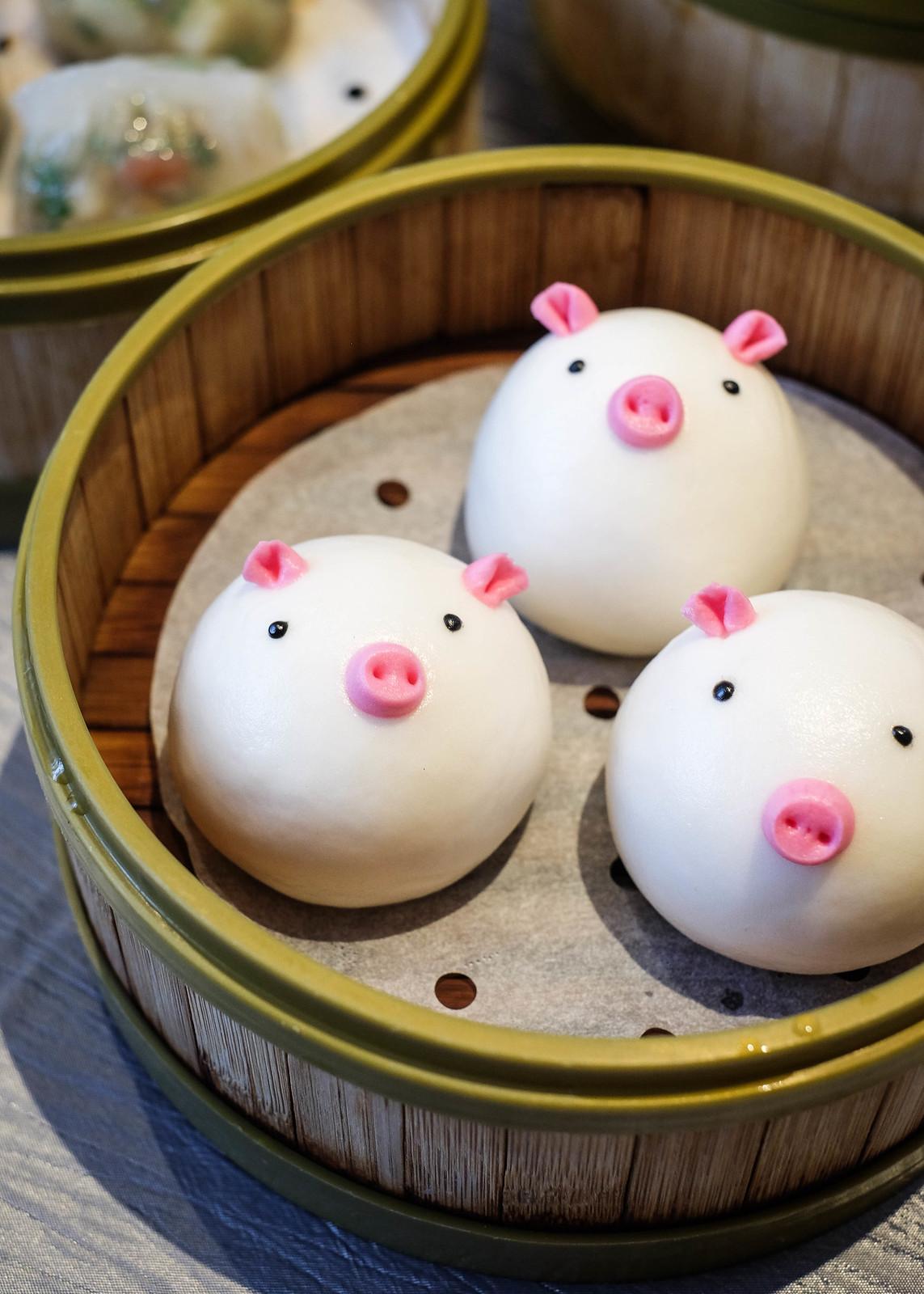 PT Piggy