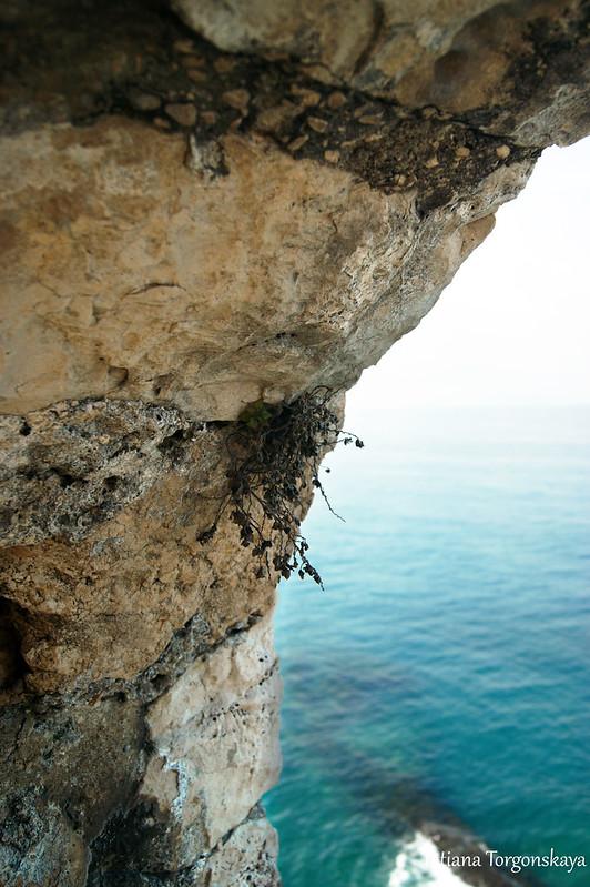 Море и каменная кладка крепостной стены