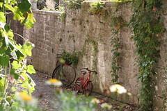 Fahrräder - Bikes