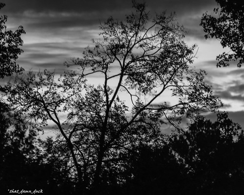 blackwhite nature clouds bw blackandwhite