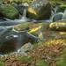 HDR - Mini Falls by al_aw20