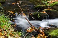 Prise d'eau d'Alzeau, - Photo of Laprade