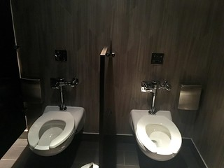 Bizarre two-person bathroom stall at Steamworks Pub