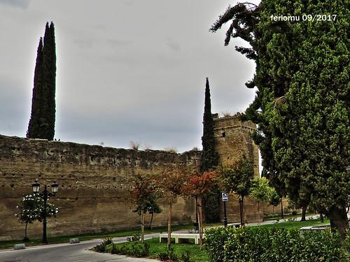 Palma del Río. Córdoba 09