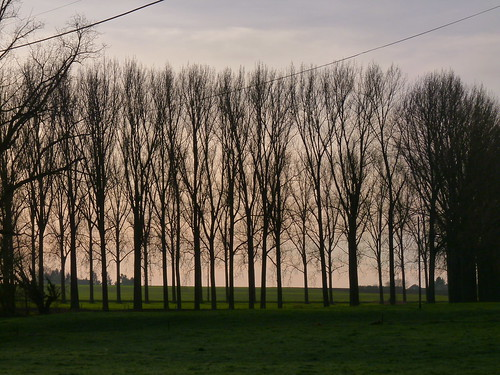 Villers-lez-Heest