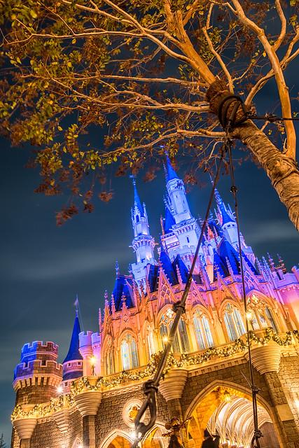 Tokyo Disneyland 2017 29 - The Tree & the Castle