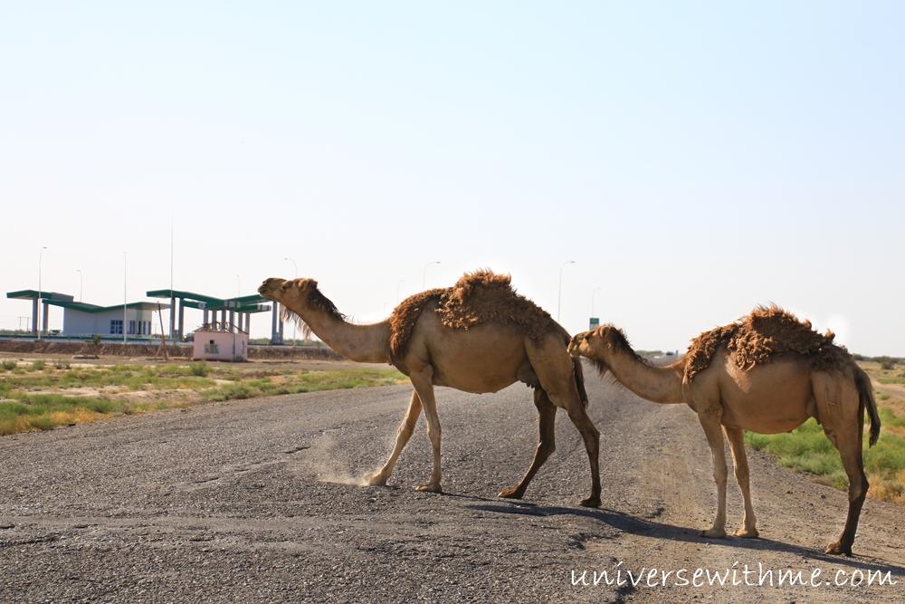 Turkmenistan toursim_005