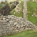 Hadrians Wall at Walltown
