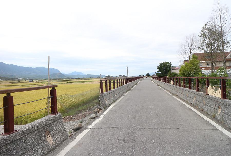 台東池上還鄉自行車道26