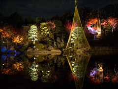 Autumnal nights in Tokyo