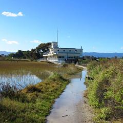 Palo Alto Baylands Marsh Trail