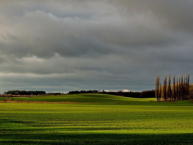 landschaft im november