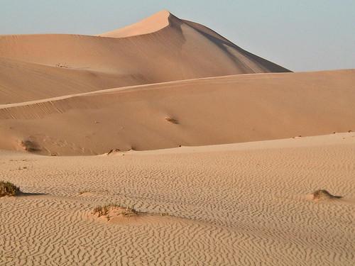 The Dune.jpg