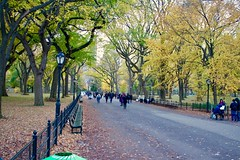 Poets Walk, Central Park