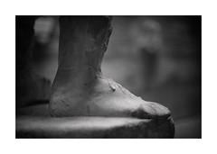 El pie del Emperador...