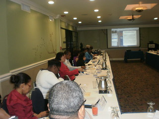 Regional Ethics Committee Training Jamaica 2015