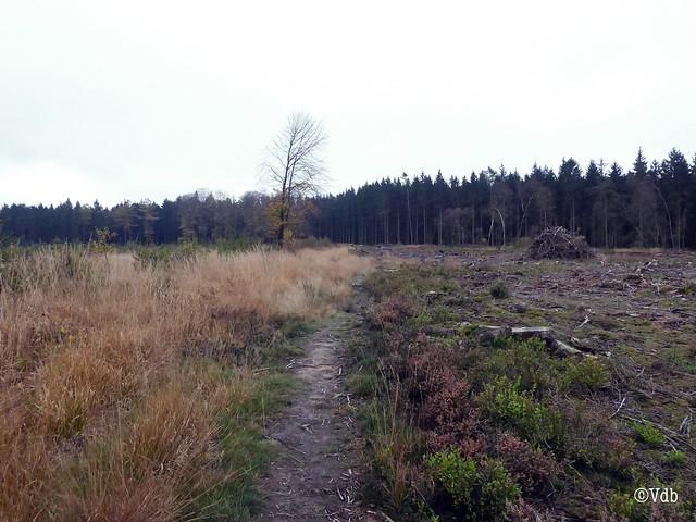 weekend in de Ardennen