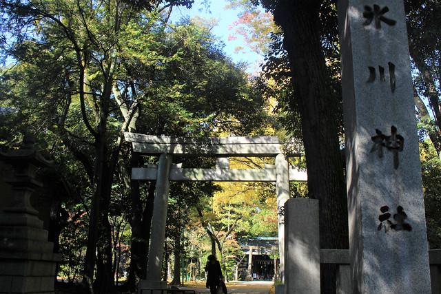 akasakahikawajinja_0011