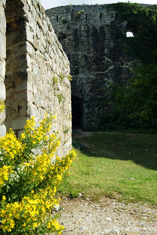 Крепостная стена и башня Цитадели