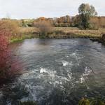 IW: River Itchen   & Tumbling Bay